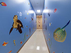 Childrens hallway with fish painted on the walls
