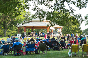 Crowd enjoying concert in the park