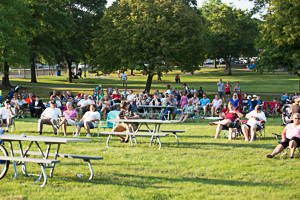 Crowd enjoying a concert in the park